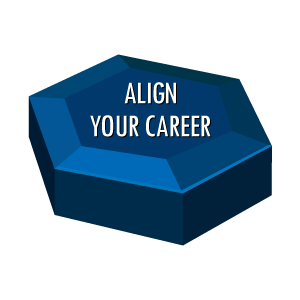 Individual Effectiveness Align-Your-Career