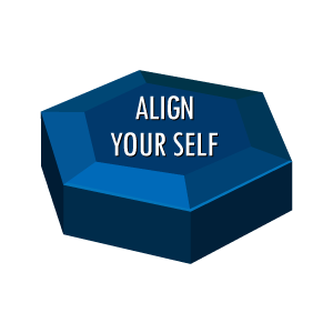 Individual Effectiveness Align-Your-Self