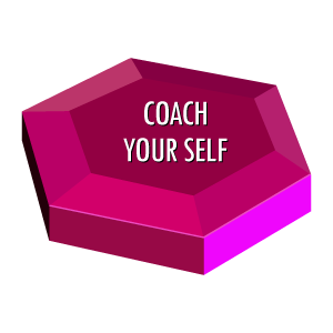 Individual Effectiveness Coach-Your-Self