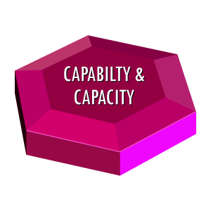 Organisational Effectiveness Capability and Capacity