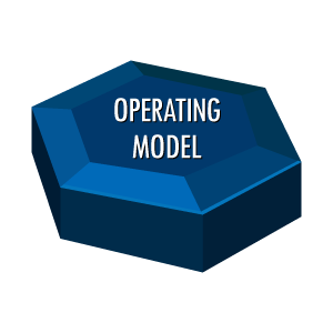 Organisational Effectiveness Operating-Model