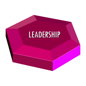 team effectiveness Leadership